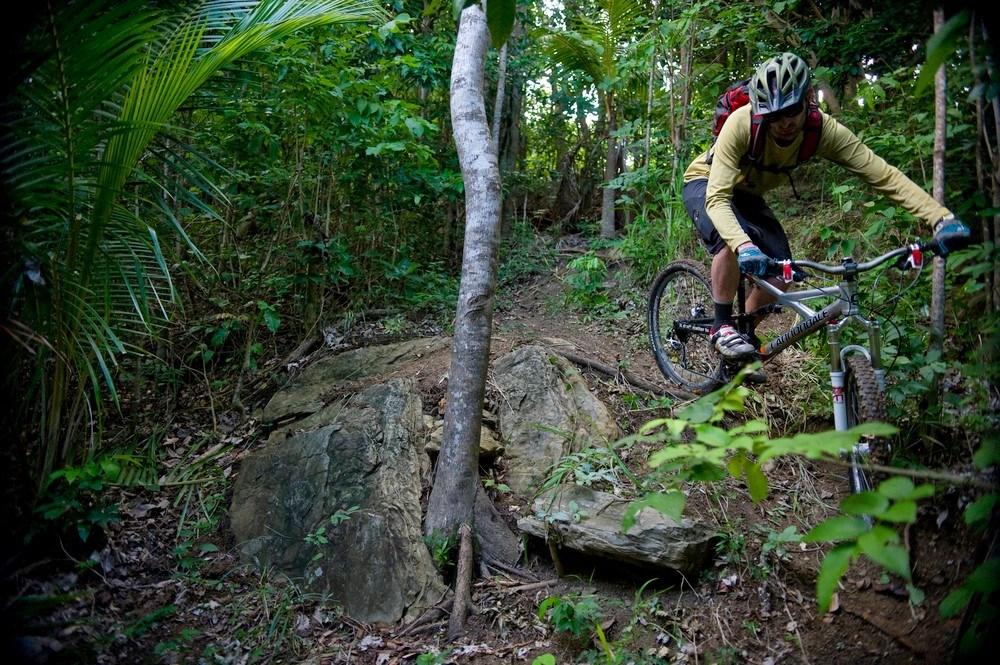 Jungle-line-at-Fat-Tyre-Festival-Jamaica