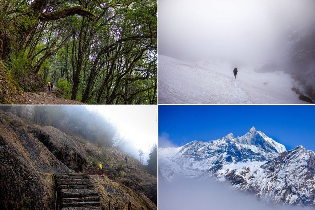 the trek to Annapurna Base Camp has it all from wild jungle trails to avalanches in the Himalayas