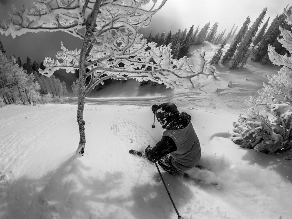 Skier goes through the trees in Aspen vs A-Basin. Photo Credit: Aspen-Snowmass