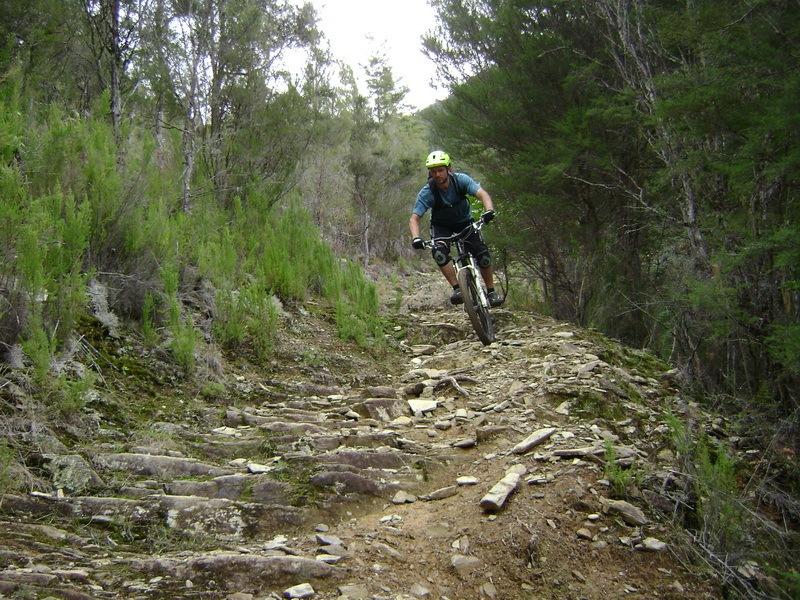 mountain biker on the Wakamarina Track with Helibike Nelson