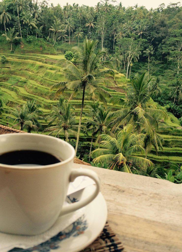 Beautiful views in Ubud