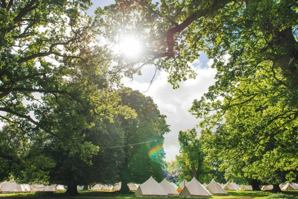 Camping at the Wilderness Festival