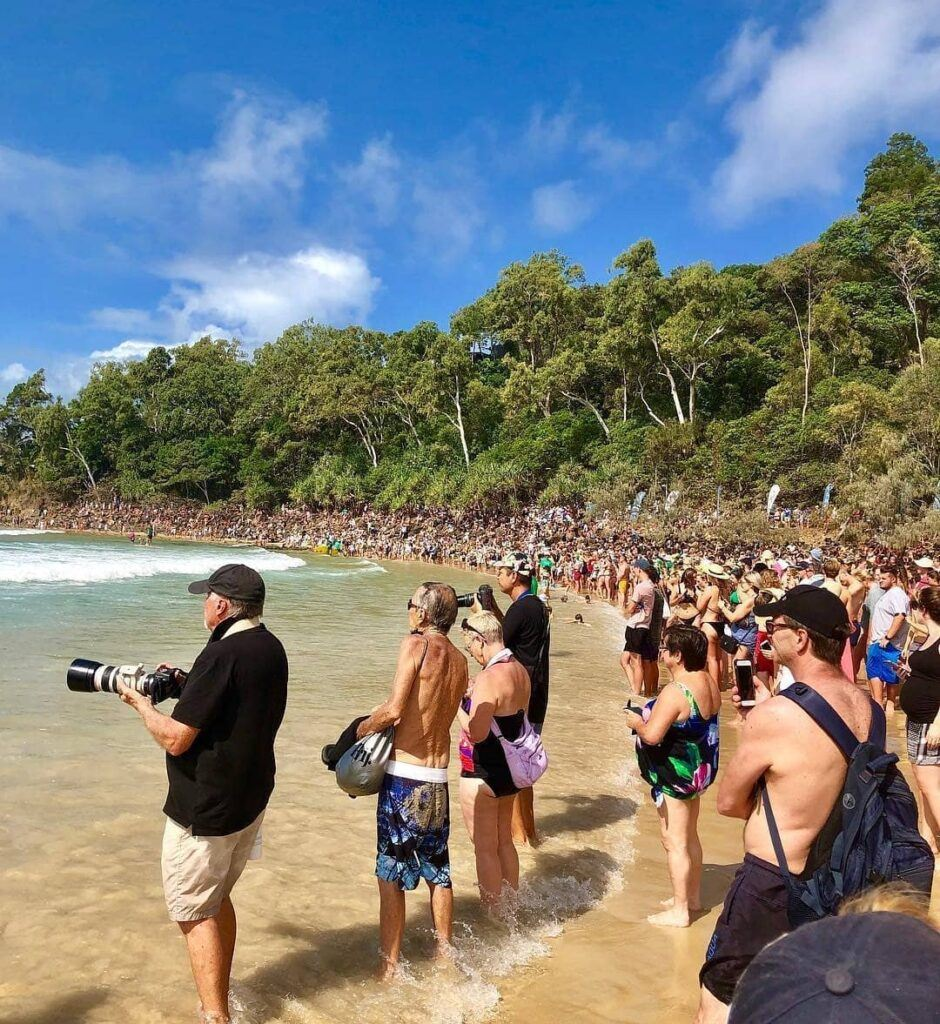 Spectators at the Noosa Festival of Surfing