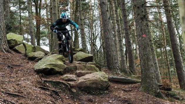 Cannock Chase Mountain Biking