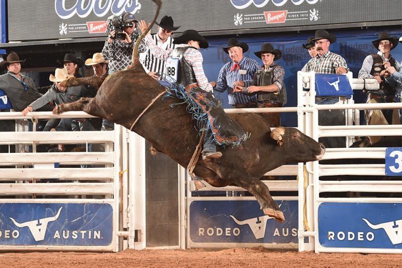 Rodeo Austin bull riding