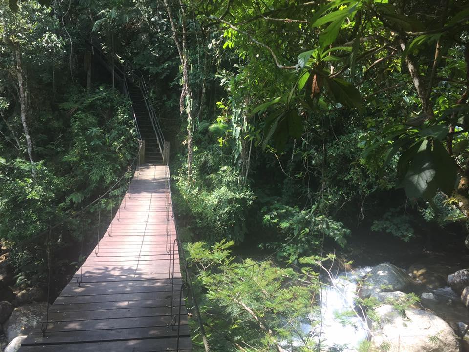 San Rafael Colombia bridge to ritmo del rio