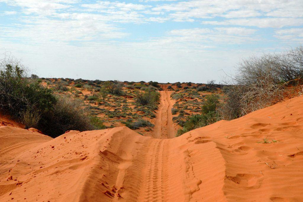 Australian Off Road Tracks Simpson Desert