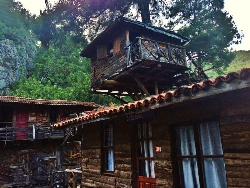 Best Hostels In The World, kadir's treehouse Turkey