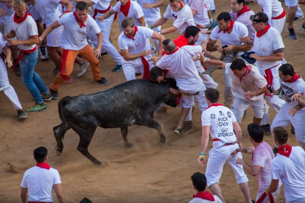 Spanish Festivals, Running of the Bulls in Pamplona