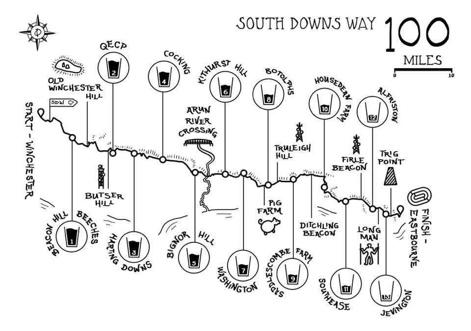 south downs way 100 course