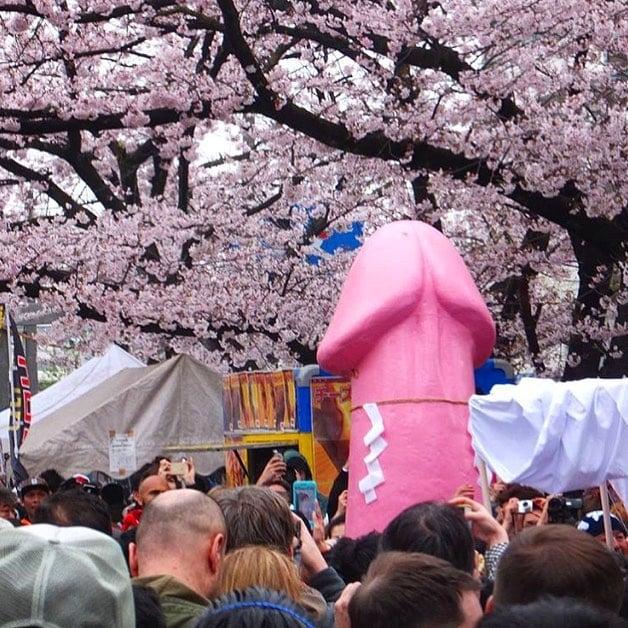 blossom season in Japan