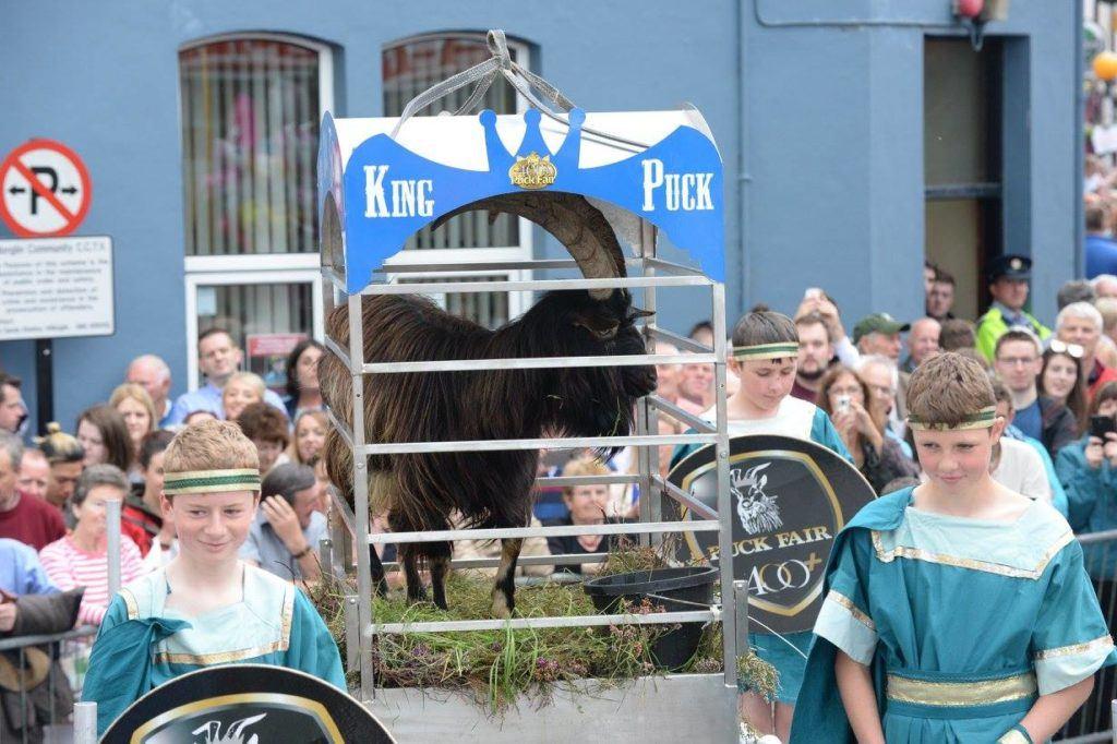 King Puck in Ireland