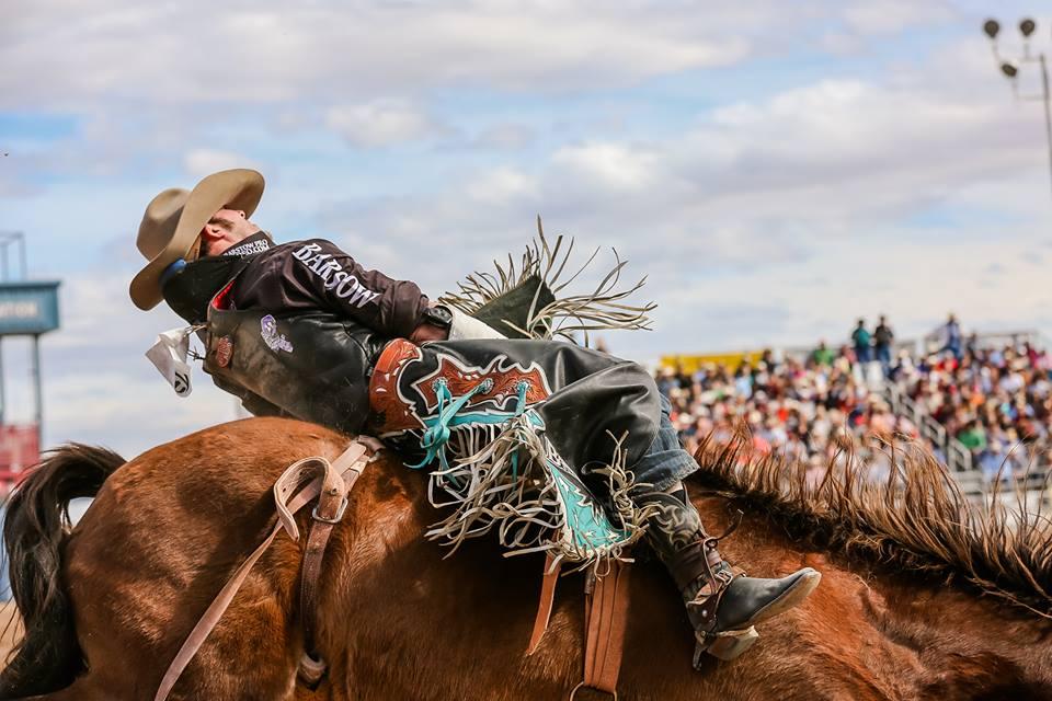 Tucson Rodeo 2021