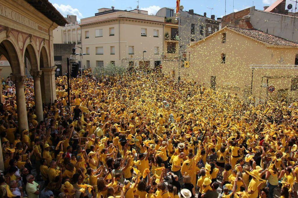 Fil Loxera in Spain