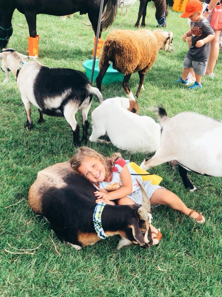 petting zoo at the Lumberjack Days