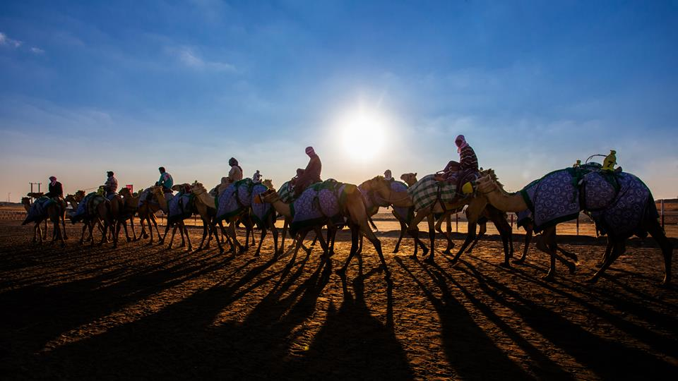 Festivals in December Al Dhafra Festival