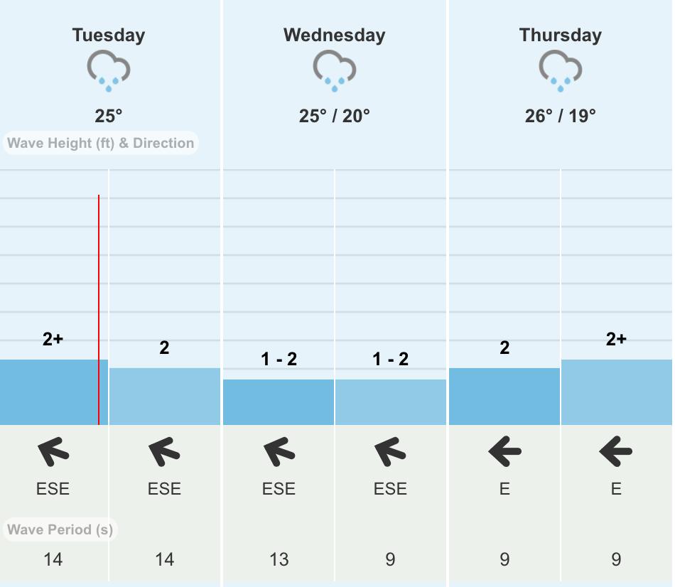 Forecast for the VISSLA Sydney Surf Pro