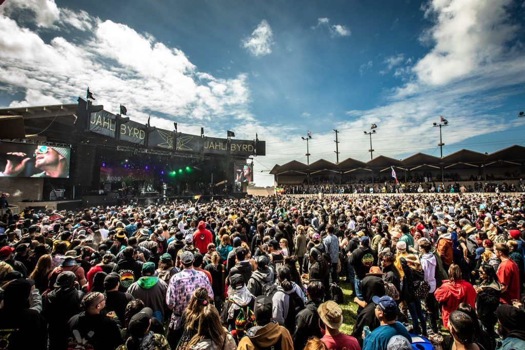 California Roots Festival in Monterey