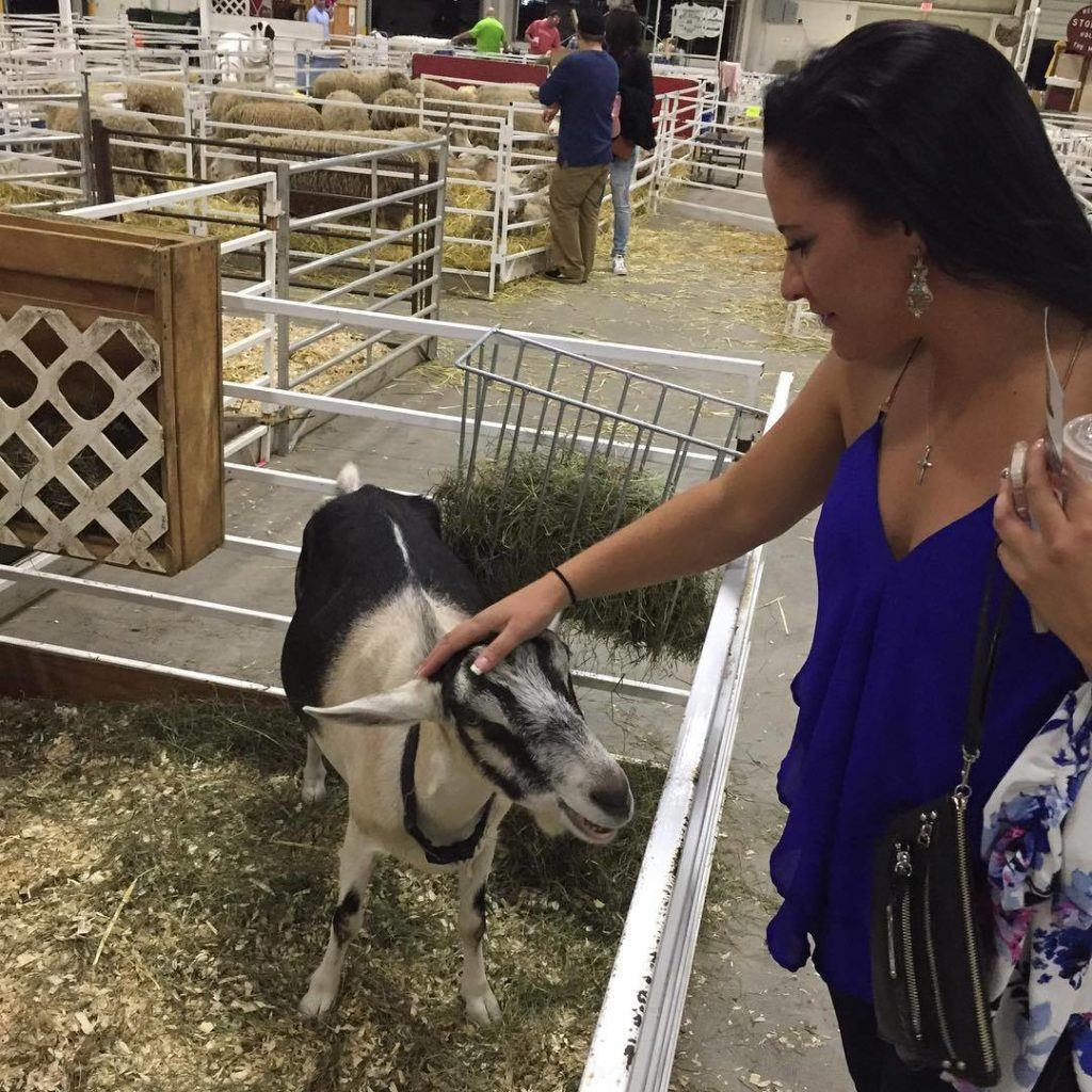 Agriculture at the Big E