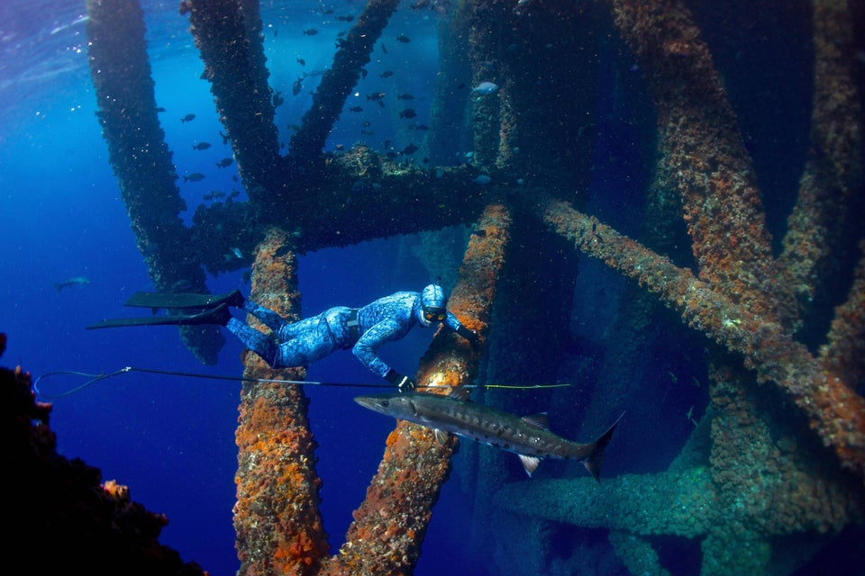 Freediving in the gulf of Mexico next to an oil rig