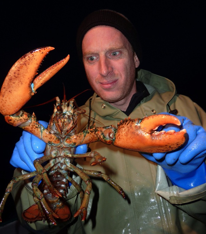 Robin Esrock fishing for lobsters in Prince Edward Island