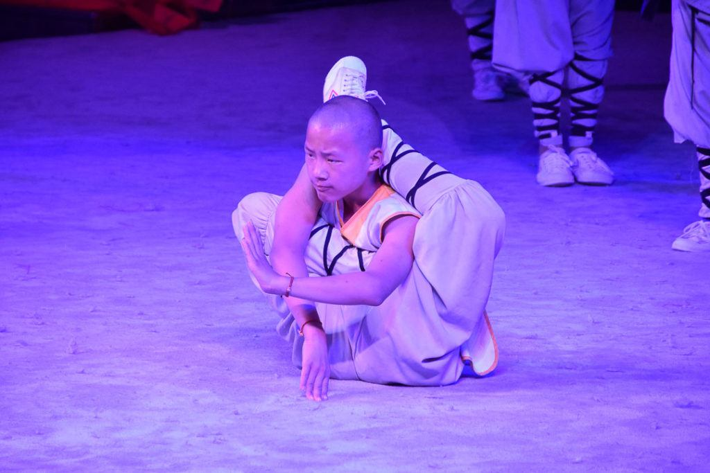 Shaolin Temple Student